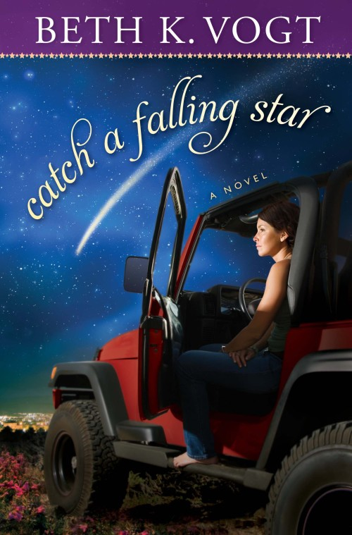 cover Catch a Falling Star