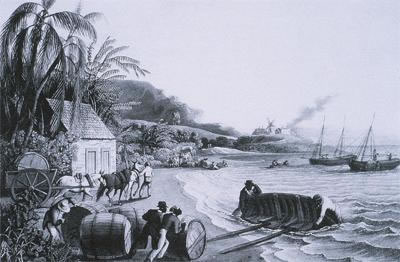 Loading sugar and molasses for shipping to England Barbados 17th 18th century_jpg